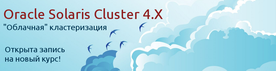 Oracle Solaris Cluster 4.X